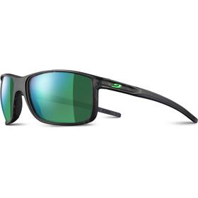Julbo Arise Spectron 3CF Okulary przeciwsłoneczne Mężczyźni, matte grey tortoiseshell